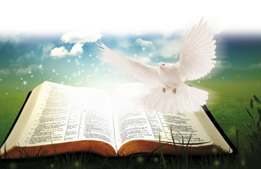 predicaciones_banner
